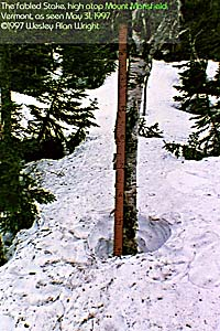 The Fabled Stake, High Atop Mount Mansfield